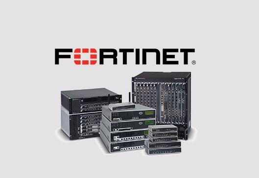 fortinet provider